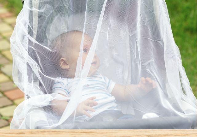Las picaduras de mosquitos son preocupantes en bebés